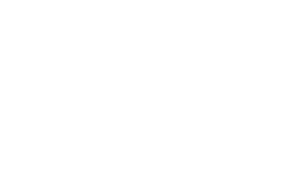BRAZED LOGO WHITE MED